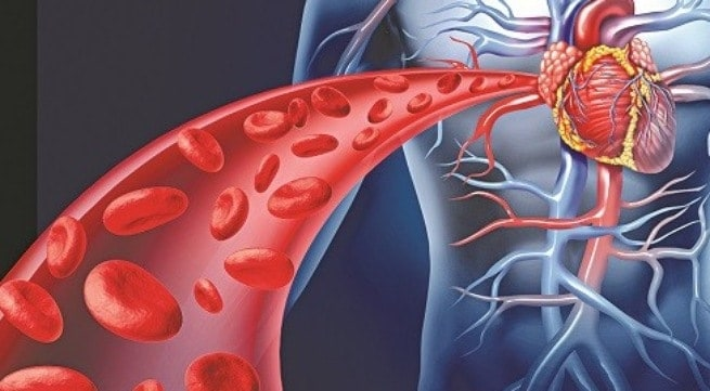 Viên uống CoQ10 Nature Made giúp giảm Cholestorol trong máu